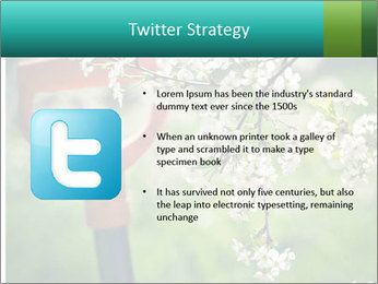 Blooming cherry branch and shovel PowerPoint Templates - Slide 9