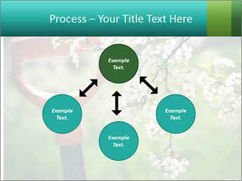 Blooming cherry branch and shovel PowerPoint Templates - Slide 91