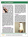 0000088697 Word Template - Page 3