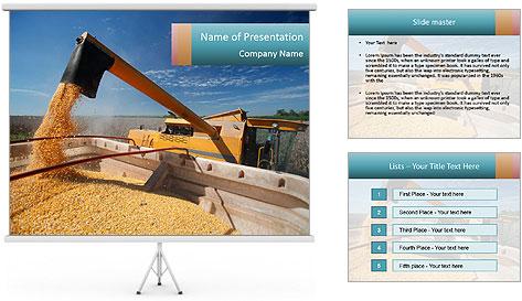 Farmland in Brazil PowerPoint Template