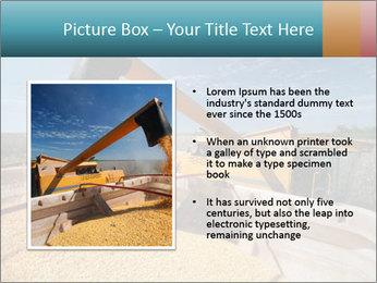 Farmland in Brazil PowerPoint Template - Slide 13