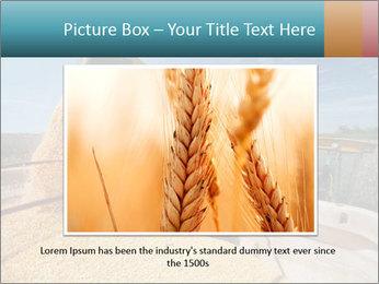 Farmland in Brazil PowerPoint Template - Slide 15