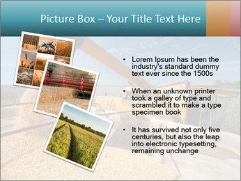 Farmland in Brazil PowerPoint Template - Slide 17