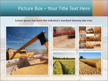 Farmland in Brazil PowerPoint Template - Slide 19