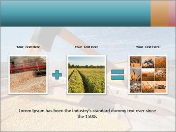Farmland in Brazil PowerPoint Template - Slide 22