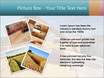 Farmland in Brazil PowerPoint Template - Slide 23