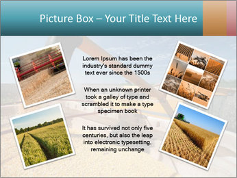 Farmland in Brazil PowerPoint Template - Slide 24