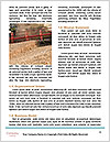 0000088699 Word Template - Page 4