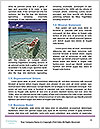 0000088701 Word Template - Page 4