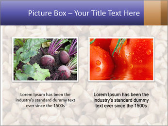Buckwheat PowerPoint Template - Slide 18