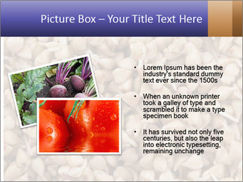 Buckwheat PowerPoint Template - Slide 20