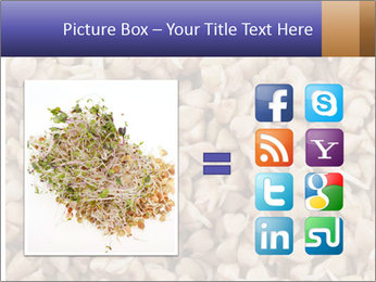 Buckwheat PowerPoint Template - Slide 21