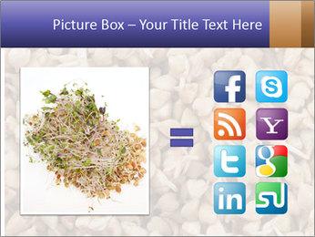 Buckwheat PowerPoint Templates - Slide 21