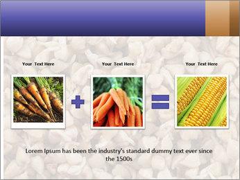 Buckwheat PowerPoint Templates - Slide 22