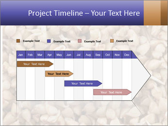 Buckwheat PowerPoint Template - Slide 25