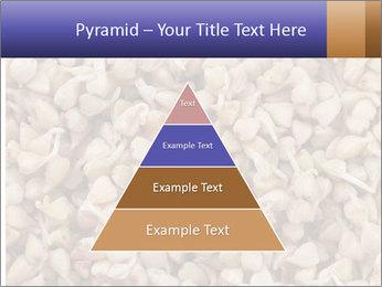 Buckwheat PowerPoint Templates - Slide 30