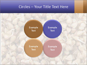 Buckwheat PowerPoint Template - Slide 38