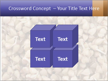 Buckwheat PowerPoint Templates - Slide 39