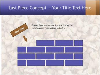 Buckwheat PowerPoint Templates - Slide 46