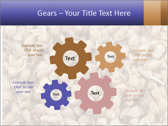 Buckwheat PowerPoint Templates - Slide 47