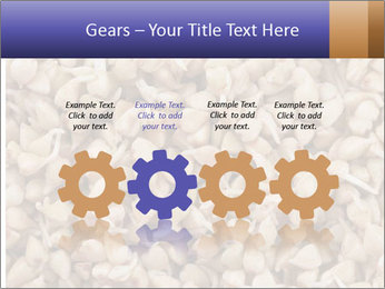 Buckwheat PowerPoint Template - Slide 48