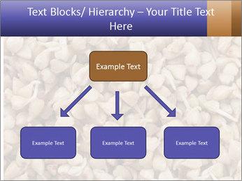 Buckwheat PowerPoint Templates - Slide 69