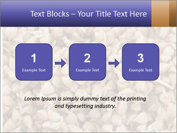 Buckwheat PowerPoint Template - Slide 71