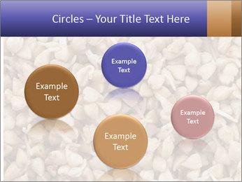 Buckwheat PowerPoint Templates - Slide 77