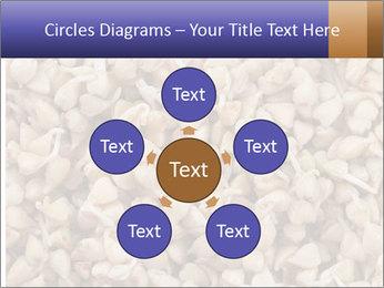 Buckwheat PowerPoint Templates - Slide 78