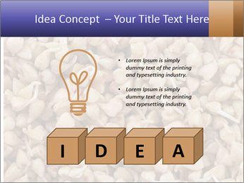 Buckwheat PowerPoint Template - Slide 80