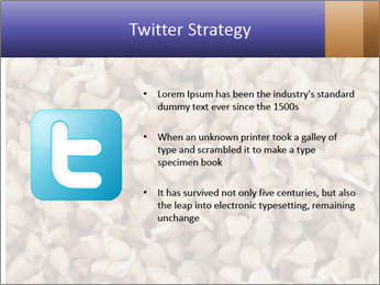 Buckwheat PowerPoint Template - Slide 9