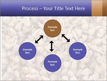 Buckwheat PowerPoint Template - Slide 91