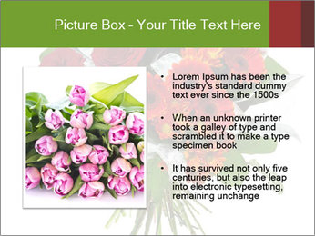 Beautiful gerberas and roses PowerPoint Templates - Slide 13