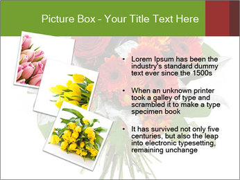 Beautiful gerberas and roses PowerPoint Templates - Slide 17