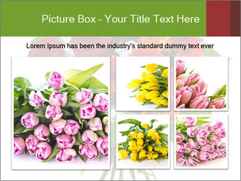 Beautiful gerberas and roses PowerPoint Templates - Slide 19