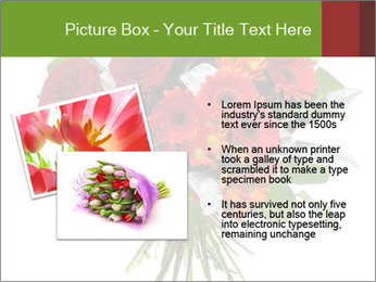 Beautiful gerberas and roses PowerPoint Templates - Slide 20