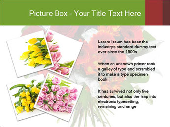 Beautiful gerberas and roses PowerPoint Templates - Slide 23
