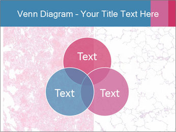 The blood veins in the lungs PowerPoint Template - Slide 33