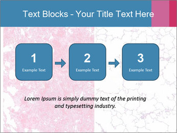 The blood veins in the lungs PowerPoint Template - Slide 71