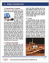 0000088720 Word Template - Page 3