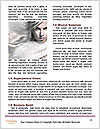 0000088725 Word Template - Page 4