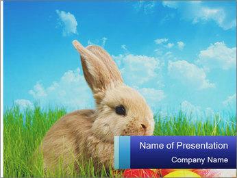 Beige Rabbit PowerPoint Template - Slide 1