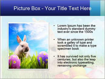 Beige Rabbit PowerPoint Template - Slide 13