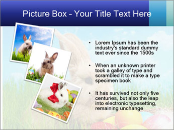 Beige Rabbit PowerPoint Template - Slide 17