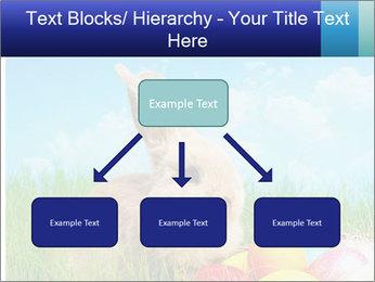 Beige Rabbit PowerPoint Template - Slide 69