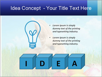 Beige Rabbit PowerPoint Templates - Slide 80