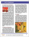 0000088736 Word Templates - Page 3