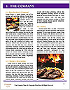 0000088741 Word Template - Page 3