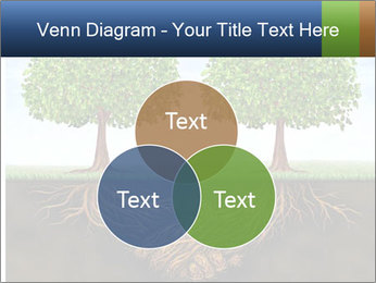 Two trees PowerPoint Templates - Slide 33