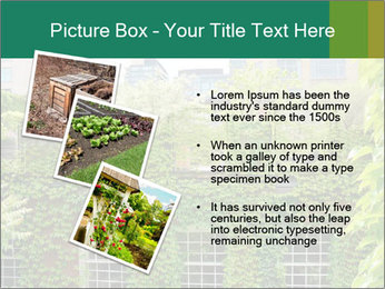 Green house PowerPoint Template - Slide 17